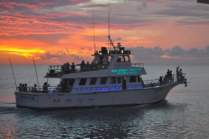 90-Minute Dolphin Watch Tour of South Padre Island