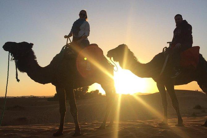 Ouarzate - Merzouga - Ouarzazate 2 days tour