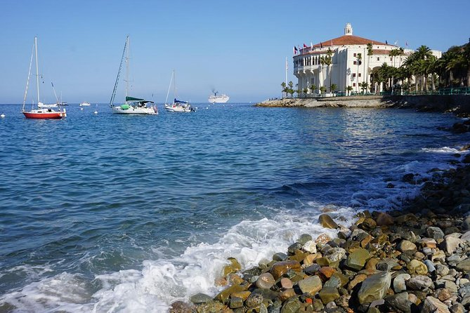 Catalina Island Day Trip from Los Angeles with Zipline Adventure