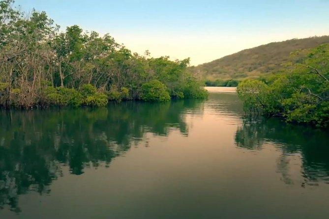 Swim at La Parguera Bio Bay Boat and Hot Springs Tour from San Juan