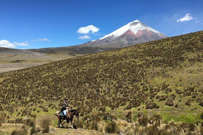 Horseback Riding at Cotopaxi Volcano