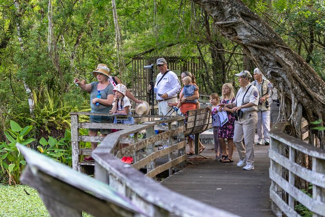 Everglades Airboat Adventure with Transport from Miami