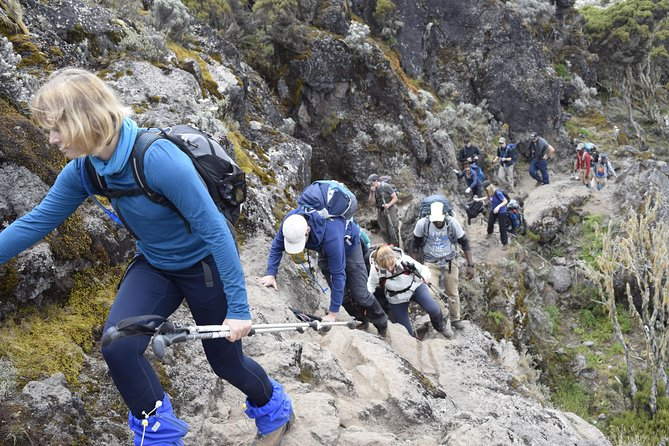 Machame Route 6 days 5 Nights/Kilimanjaro Climb