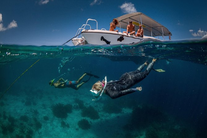 Double Dip Snorkel Trip