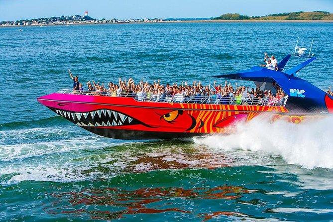 Boston Codzilla High-Speed Thrill Boat Ride