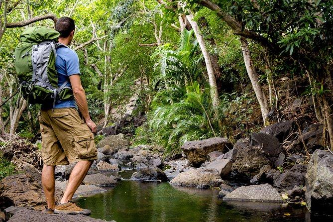 Wailua Valley & Waterfalls Audio Driving Tour