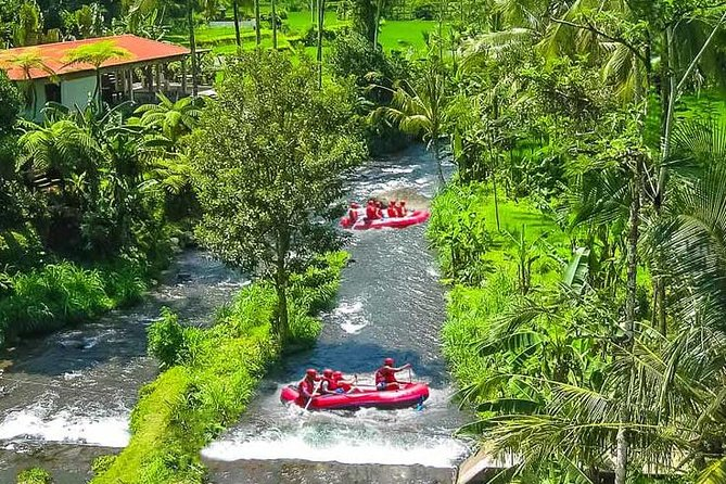 Ayung White Water Rafting and Ubud Art Village Tour : Bali Best One Day Trip