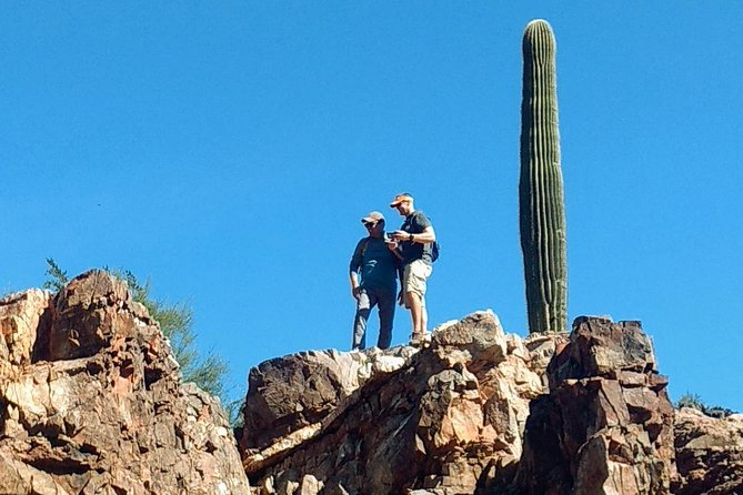 Private Group Sonoran Desert Half Day Hiking Adventure