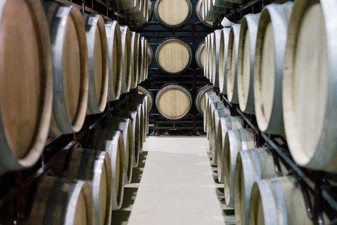 Alentejo Premium Wine Tour