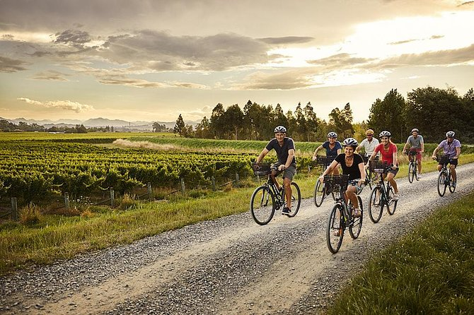 Self-Guided Biking Wine Tour (full day) in the Marlborough Region.