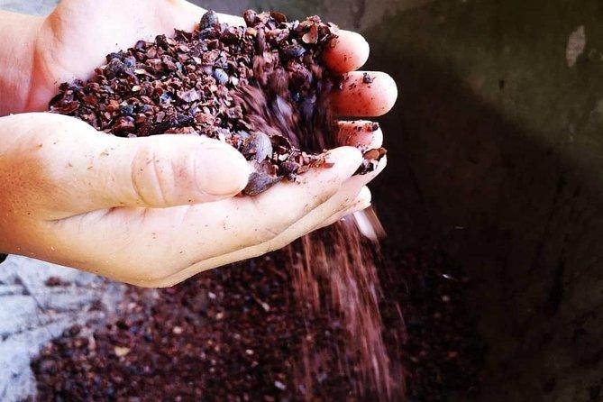 Chocolate & Coffee Tour Manuel Antonio