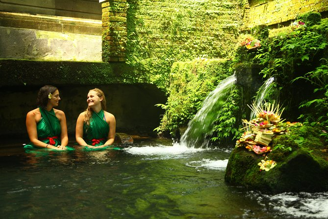 Bali healer and Holybathing Private day trip