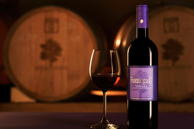 Organic Wine and Gourmet experience in Tuscany Chianti hills