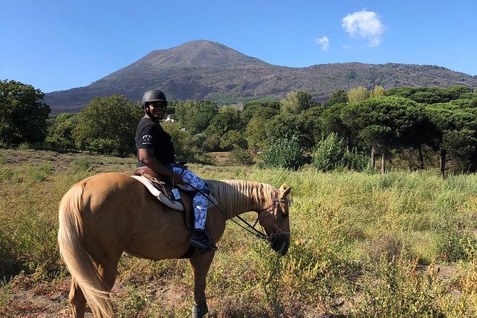 Horse Riding Experience on Vesuvius w/ Wine Tasting