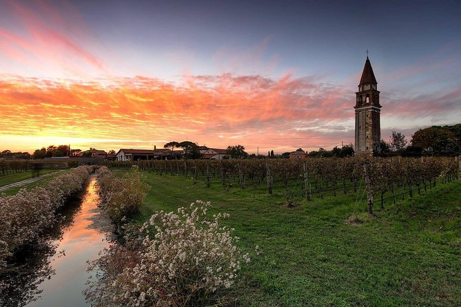 Private Cruise: Wine Tasting on the Islands from Venice