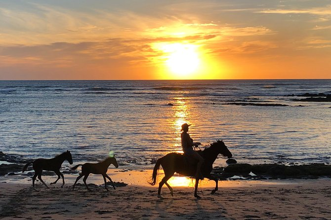 Private tours and transfer Costa Rica