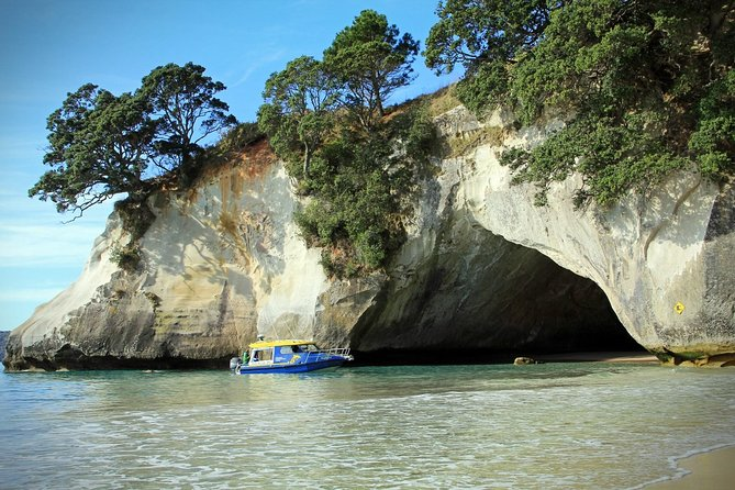 Cathedral Cove and Hot water beach Day Trip from Auckland
