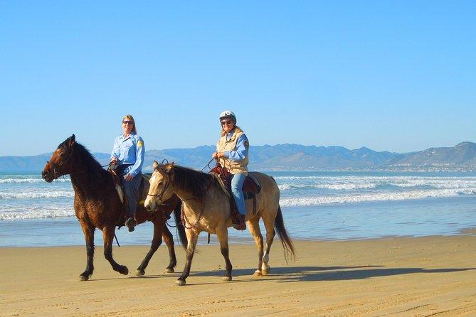 Horseback Ride & Alcatraz Prison Tickets