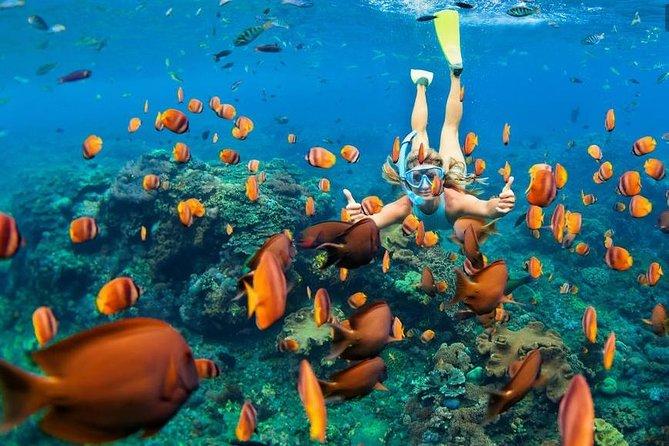 Explore & Snorkeling to Gili Kondo,Gili Bidara, Gili Kapal, & Gili Petagan