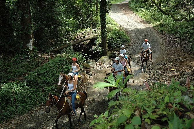 Horseback Riding Jaco