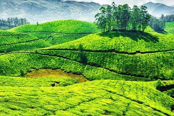 Explore Kerala (4n 5d) - Exib115
