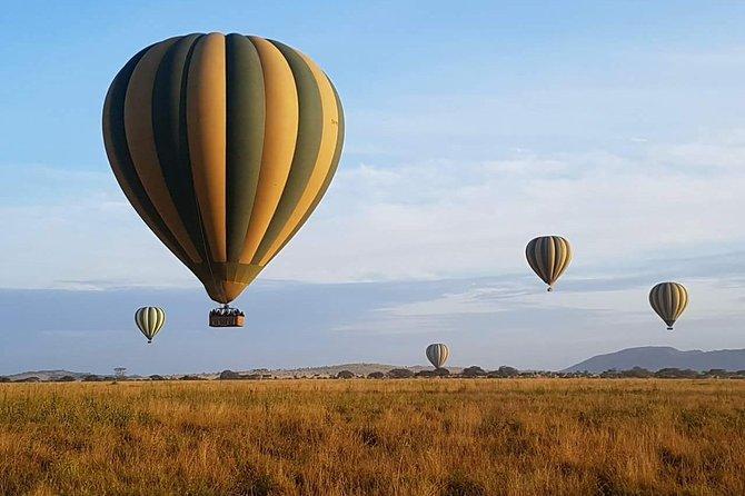 7 Days Africa Wildlife Safaris
