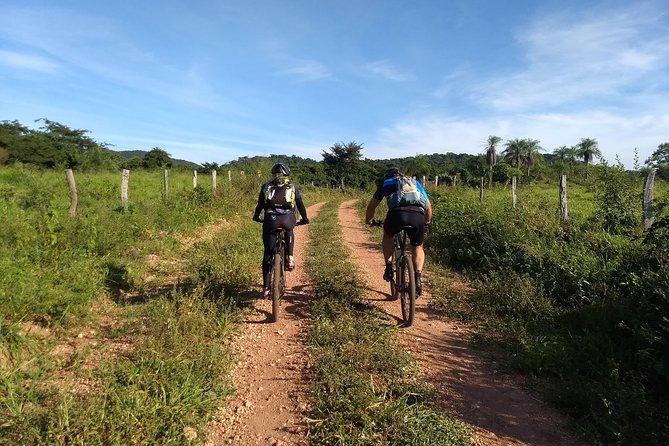 Bike Tours (Waterfalls + Kayak + Stand Up)