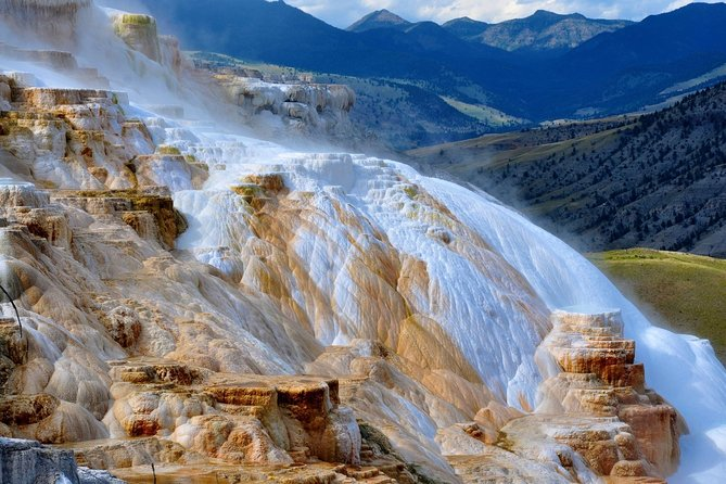 All-Day Tour of Yellowstone National Park