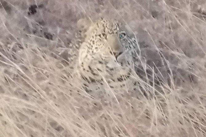 6 Days Serengeti Migration Safari ( Ngorongoro,serengeti,norther Serengeti)
