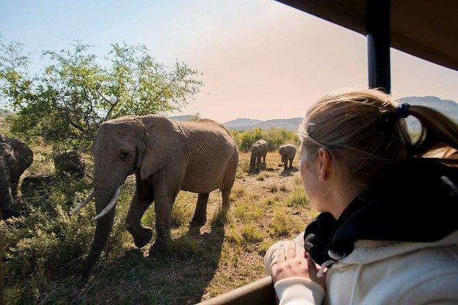 3 Day, 2 Night Bakubung Bush Lodge, Pilanesberg National Park