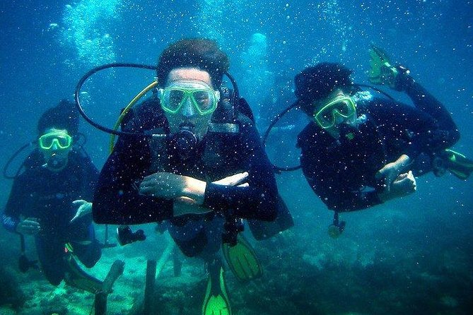Cebu Diving Adventure