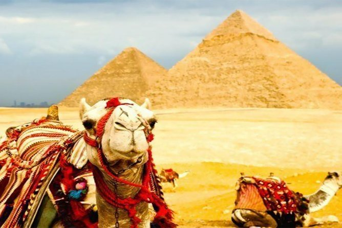 Cairo Giza in one day Tour including Dinner cruise Lunch camel ride