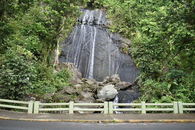 Day Trip to El Yunque Tropical Rainforest from San Juan