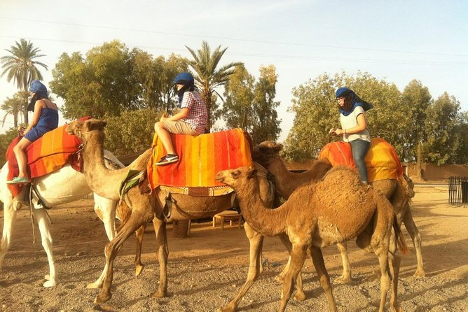Marrakech camel ride tour