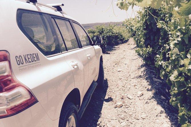 Judean Hills Wine Tasting Tour From Tel Aviv
