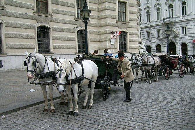 Coffee Shops--Carriage Ride by Fiaker Wien