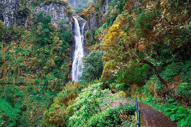 Full-Day Rabaçal Levada Walk from Funchal