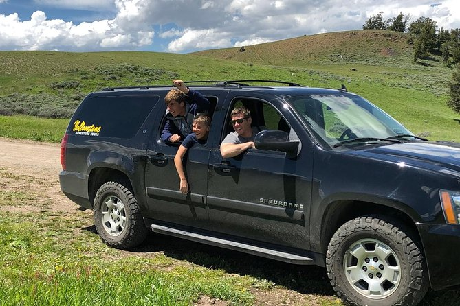 Private Yellowstone Wildlife Safari with Guided Hikes and Picnic Lunch Included