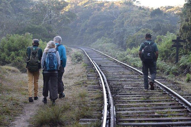Hike to Horton Plains Border via Rail Tracks