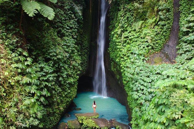 Bali Secret Waterfall Tour (Private & All-Inclusive )