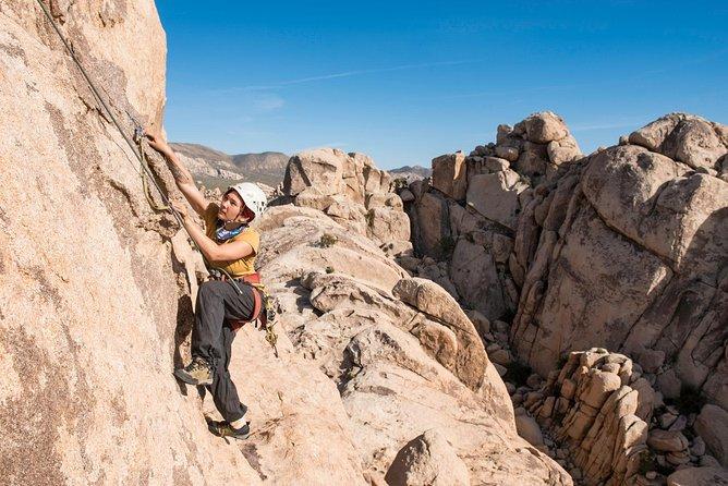 Rock Climbing Trips in Joshua Tree National Park (6 Hours)