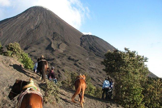 Pacaya Volcano Day Trip from Guatemala City