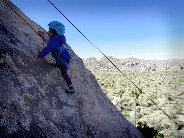 Family Rock Climbing Trips in Joshua Tree National Park (6 Hours)