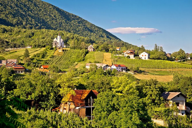 Taste Croatian Wines At The Winery Countryside Of Croatia Plesivica Marriott