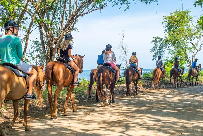Chukka Zipline, Tube, & Horse Ride & Swim With Access Pass To Ocean Outpost Park