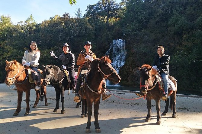 Half Day Lijiang horse-riding&sightseeing&Local culture tour