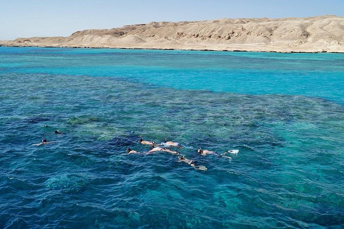 1 Day Snorkeling & Diving Trip to Tiran Island by Boat