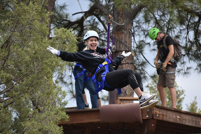 6-Zipline Adventure in the San Juan Mountains near Durango