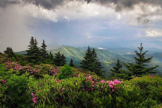 Custom Half-Day Photo Tour with Photography Lessons from Asheville