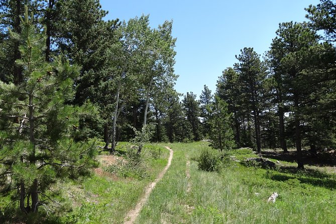 Hike the Rockies Half Day Tour